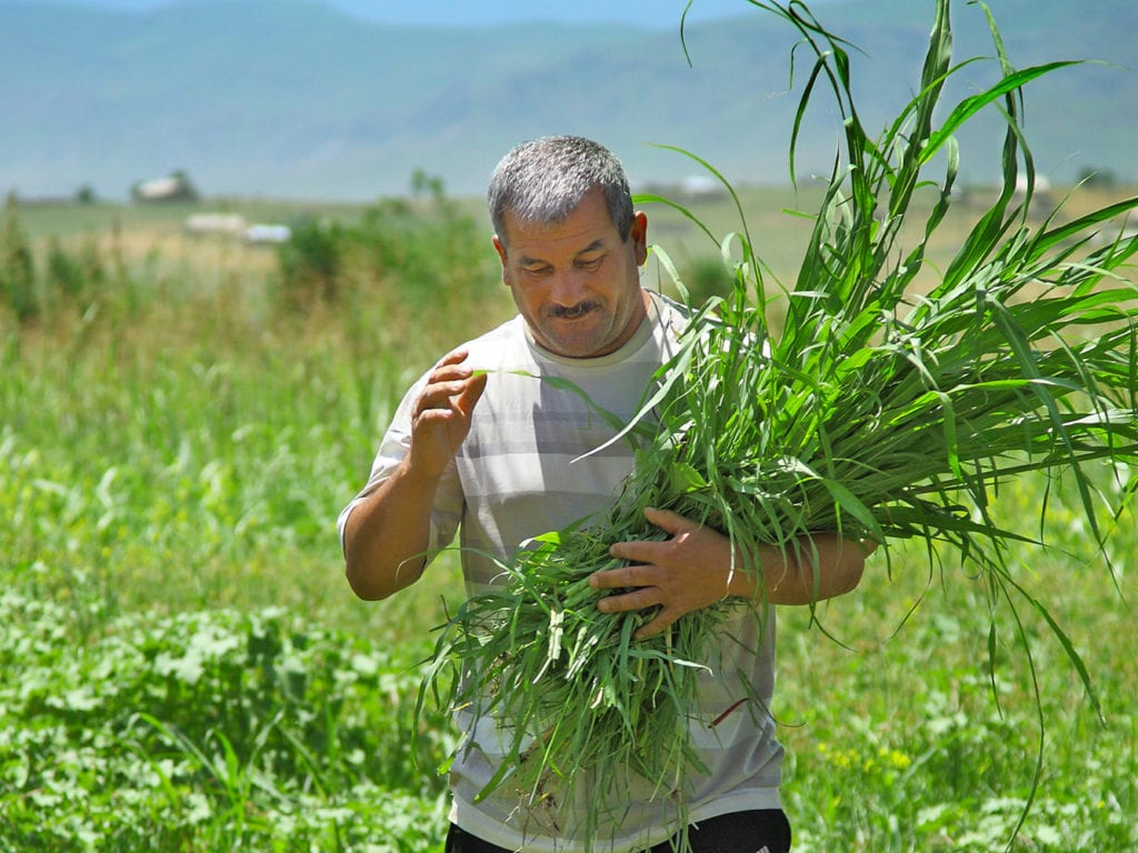 FINCA Tajikistan